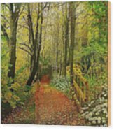 Zac's Fav Walk Wood Print