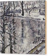 Zamecky Rybnik Wood Print