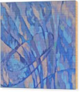 Zardoz 2 Wood Print