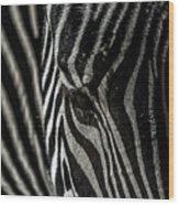 Zebra 3 Wood Print