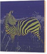 Zebra At Night Wood Print