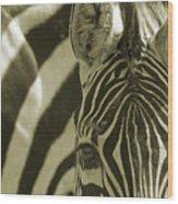 Zebra Close Up A Wood Print