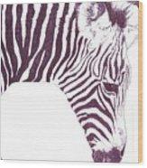 Zebra Colt Wood Print