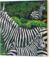 Zebra Family Wood Print