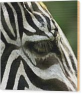 Zebra Wood Print
