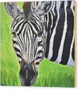 Zebra In The Wild Wood Print