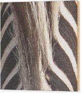 Zebra Mane Wood Print
