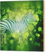 Zebra Masai Mara, Kenya Wood Print