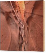 Zebra Slot Canyon Glow Wood Print