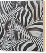 Zebra Triptyche Middle Wood Print