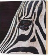 Zebras Eye Wood Print