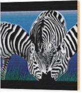 Zebras In Blue Oasis Wood Print