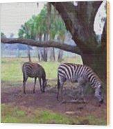 Zebras Under Oaks Wood Print