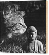 Zen Cat Black And White- Photography By Linda Woods Wood Print
