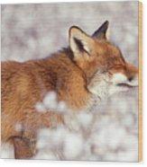 Zen Fox Series - Happy Fox IIn The Snow Wood Print