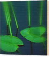 Zen Photography Green  Wood Print