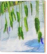 Zen Reflection Wood Print
