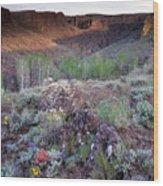 Zeno Canyon Wood Print