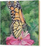 Zinnia And Monarch Wood Print