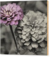 Zinnia Flower Pair Wood Print
