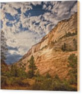 Zion Afternoon Wood Print