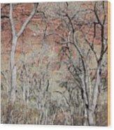 Zion At Kayenta Trail Wood Print