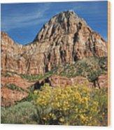 Zion Canyon - Navajo Sandstone Wood Print