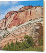 Zion Hike 1 View 2 Wood Print
