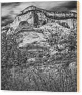 Zion Landscape Wood Print
