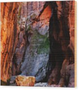 Zion Narrows With Boulder Wood Print