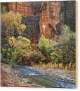 Zion National Park 57 Wood Print