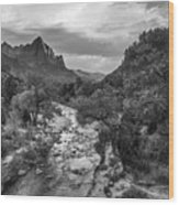 Zion National Park In Black And White  Wood Print