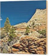 Zion National Park Vista Wood Print