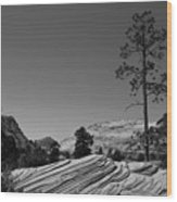 Zion Park Geology Texture Wood Print