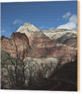 Zion Roadway In Deep Shadow Wood Print