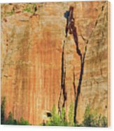 Zion Rock Wall Wood Print