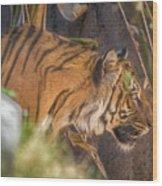 Zoo8 Wood Print