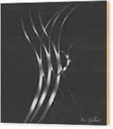 Zoom,zoom Wood Print