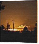 Zuni Mountain Gold  Wood Print