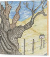 Zuniga Ranch Almond Tree Wood Print