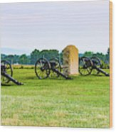 4th United States Artillery Wood Print