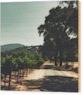 A Drive Through Napa Valley Wood Print