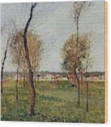 A Meadow In Eragny, 1889 Wood Print