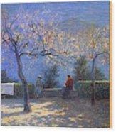 Angelo Morbelli 1853-1919, Spring In Colma - 1906 Wood Print