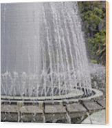 Arthur J. Will Memorial Fountain At Grand Park Wood Print