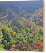 Autumn Color On Newfound Gap Road In Smoky Mountains National Park Wood Print