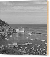 Avalon Harbor - Catalina Island, California Wood Print