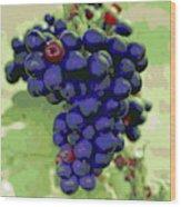 Blue Grape Bunches 6 Wood Print