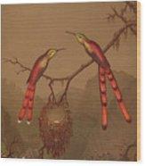 Brazilian Hummingbirds Wood Print