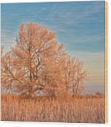 Canada, Manitoba, Lorette Wood Print